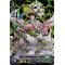 V-EB03/SV03EN White Lily Musketeer, Cecilia Special Vanguard Rare (SVR)