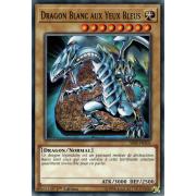 SS02-FRA01 Dragon Blanc aux Yeux Bleus Commune