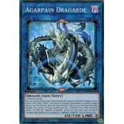 SAST-FR053 Agarpain Dragarde Super Rare