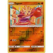 SL09_74/181 Tygnon Inverse