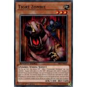 SBLS-FR033 Tigre Zombie Commune
