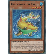 DANE-FR023 Glissedauphin Xyz Commune