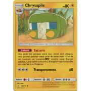 SL10_58/214 Chrysapile Peu commune