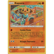 SL10_101/214 Kapoera Peu commune