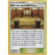 SL10_179/214 Dojo des Arts Martiaux Peu commune