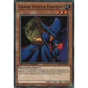 SBAD-FR012 Grand Voleur Fantôme Commune