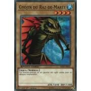 SBAD-FR022 Gyojin du Raz-de-Marée Commune