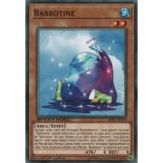 SBAD-FR029 Barbotine Commune