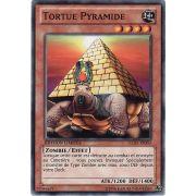 GLD5-FR003 Tortue Pyramide Commune