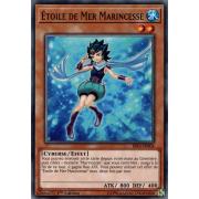 RIRA-FR004 Étoile de Mer Marincesse Commune