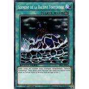 SBSC-FR016 Serment de la Baleine Forteresse Commune
