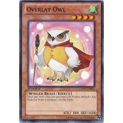 GAOV-EN003 Overlay Owl Commune