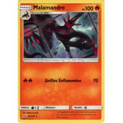 SL11_34/236 Malamandre Rare