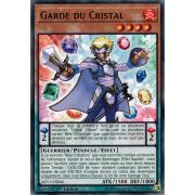 MP19-FR066 Garde du Cristal Commune