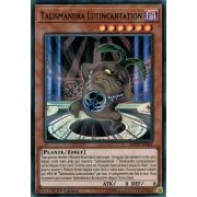 MP19-FR084 Talismandra Lutincantation Super Rare