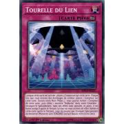 MP19-FR127 Tourelle du Lien Commune