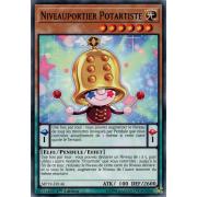 MP19-FR146 Niveauportier Potartiste Commune