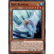 MP19-FR148 Raie Blanche Commune
