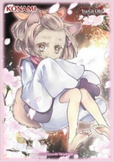 Protèges cartes Yu-Gi-Oh Ash Blossom