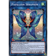 CHIM-FR050 Papillion Séraphin Commune