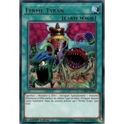 CHIM-FR083 Ferme Tyran Rare