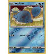 SL12_45/236 Wailmer Inverse