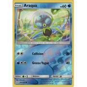 SL12_64/236 Araqua Inverse