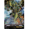 V-BT07/SV01EN Cosmo Healer, Ergodiel Special Vanguard Rare (SVR)