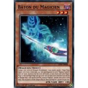 LED6-FR008 Bâton du Magicien Commune