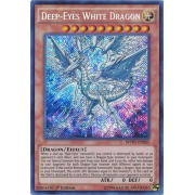 MVP1-ENS05 Deep-Eyes White Dragon Secret Rare