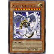 DP1-EN006 Winged Kuriboh LV10 Rare
