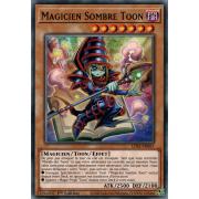 LDS1-FR067 Magicien Sombre Toon Commune
