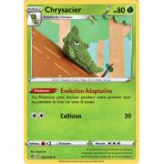 SS02_002/192 Chrysacier Peu commune