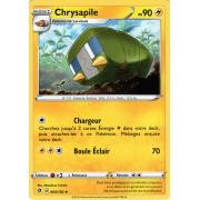SS02_065/192 Chrysapile Peu commune