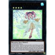 ROTD-FR046 Strenna la Reine Rikka Ultra Rare