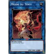 MP20-FR121 Moine du Tenyi Commune