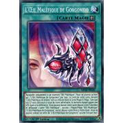 MP20-FR187 L'Œil Maléfique de Gorgoneio Commune