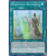 MP20-EN099 Whitefish Salvage Super Rare