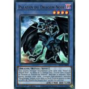 DLCS-FR069 Paladin du Dragon Noir Ultra Rare
