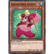 DLCS-FR091 Aquactrice Guppy Commune