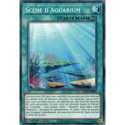 DLCS-FR093 Scène d'Aquarium Commune