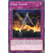 DLCS-EN020 Final Fusion Commune