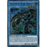 Paladin of Dark Dragon
