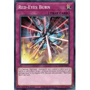 DLCS-EN072 Red-Eyes Burn Commune