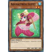 DLCS-EN091 Aquaactress Guppy Commune