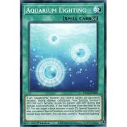 DLCS-EN095 Aquarium Lighting Commune