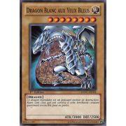 SDDC-FR004 Dragon Blanc Aux Yeux Bleus Commune