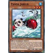 PHRA-FR082 Panda Jabeur Commune