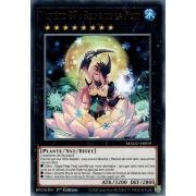 MAGO-FR059 Numéro 87 : Reine de la Nuit Rare (Or)