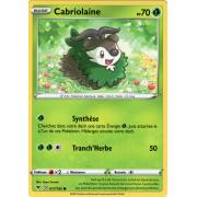 SS04_017/185 Cabriolaine Commune